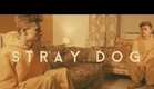 Stray Dog - Bertie Gilbert Short Film Trailer