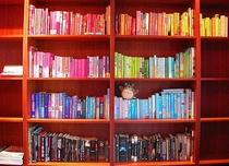 Organizing the Bookcase  - Poster / Capa / Cartaz - Oficial 1