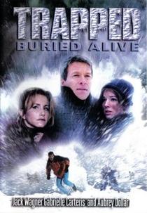 Resgate na Neve - Poster / Capa / Cartaz - Oficial 1