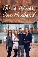 Três Esposas, Um Marido (Three Wives, One Husband)