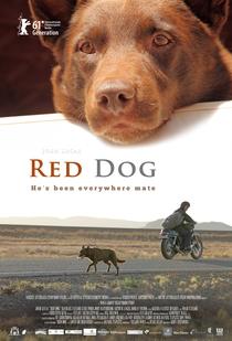 Cão Vermelho - Poster / Capa / Cartaz - Oficial 1