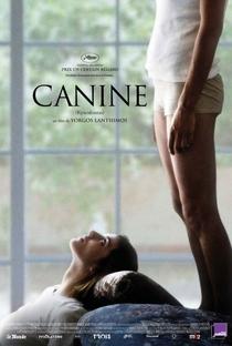 Dente Canino - Poster / Capa / Cartaz - Oficial 2