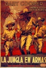 A Verdadeira Glória - Poster / Capa / Cartaz - Oficial 1