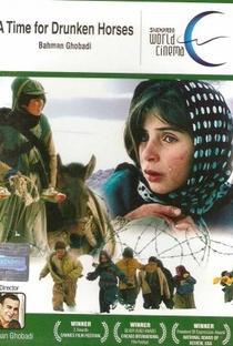 Tempo de Cavalos Bêbados - Poster / Capa / Cartaz - Oficial 8