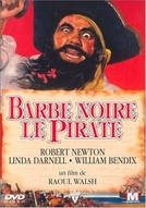 Barba Negra, o Pirata (Blackbeard the pirate)