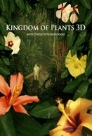 O Reino das Plantas (Kingdom of Plants 3D)
