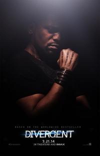 Divergente - Poster / Capa / Cartaz - Oficial 10