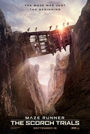 Maze Runner: Prova de Fogo (Maze Runner: The Scorch Trials )