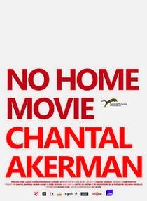 Não é Um Filme Caseiro - Poster / Capa / Cartaz - Oficial 2