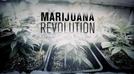 A Revolução da Maconha (The Marijuana Revolution)