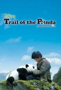 Na trilha do panda - Poster / Capa / Cartaz - Oficial 1