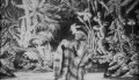 La chrysalide et le papillon - Melies (1901)