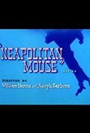 Neapolitan Mouse (Neapolitan Mouse)