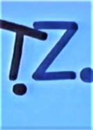 T.Z. (T.Z.)