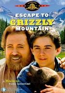 A Montanha Mágica (Escape to Grizzly Mountain)