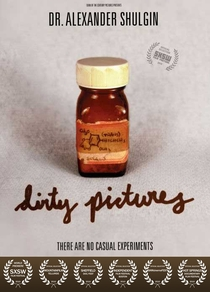 Dirty Pictures - Poster / Capa / Cartaz - Oficial 1