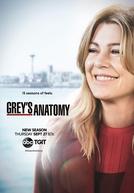 A Anatomia de Grey (15ª Temporada) (Grey's Anatomy (Season 15))