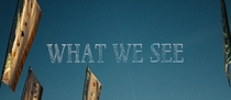 What we see - Poster / Capa / Cartaz - Oficial 1
