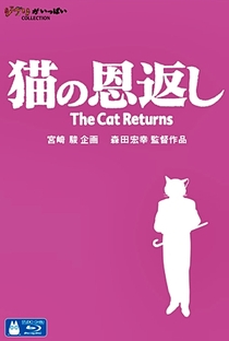 O Reino dos Gatos - Poster / Capa / Cartaz - Oficial 13