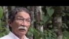 Documentário: O Veneno da Jararaca - Acesso ao Patrimônio Genético Brasileiro