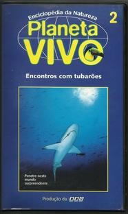 Planeta Vivo - Encontros com Tubarões - Poster / Capa / Cartaz - Oficial 1