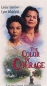 As Cores da Amizade (The Color of Courage)