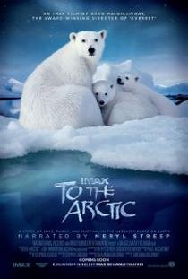 To the Arctic 3D - Poster / Capa / Cartaz - Oficial 1