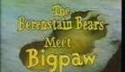 The Berenstain Bears Meet Big Paw (Part 1 of 4)