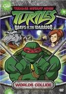 As Tartarugas Mutantes Ninja (3ª Temporada) (Teenage Mutant Ninja Turtles (Season 3))