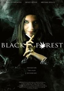 João, Maria e a Bruxa da Floresta Negra - Poster / Capa / Cartaz - Oficial 1