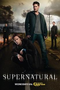 Sobrenatural (8ª Temporada) - Poster / Capa / Cartaz - Oficial 1