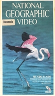 National Geographic Vídeo - Mundo Alado (National Geographic Specials: Winged World)