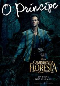 Caminhos da Floresta - Poster / Capa / Cartaz - Oficial 16