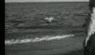 """Scum of the Earth"" Movie Trailer (1963)"
