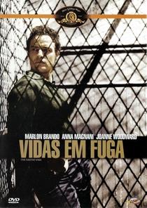 Vidas em Fuga - Poster / Capa / Cartaz - Oficial 3