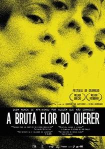 A Bruta Flor do Querer - Poster / Capa / Cartaz - Oficial 1