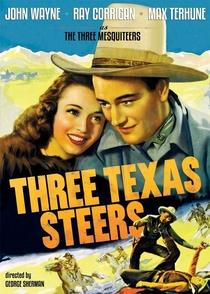 Os Três Cavaleiros do Texas - Poster / Capa / Cartaz - Oficial 1