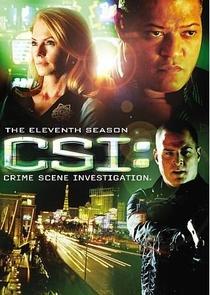 CSI: Investigação Criminal (11ª Temporada) - Poster / Capa / Cartaz - Oficial 2