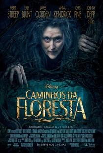 Caminhos da Floresta - Poster / Capa / Cartaz - Oficial 1