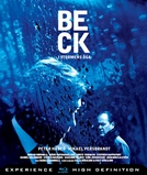 Beck: The Eye of the Storm (Beck: I Stormens Öga)