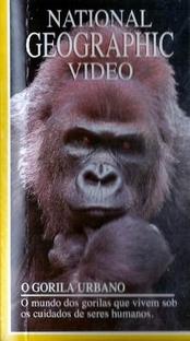 National Geographic Video - O Gorila Urbano - Poster / Capa / Cartaz - Oficial 1