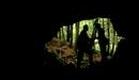 Kinsey - Trailer (2004)