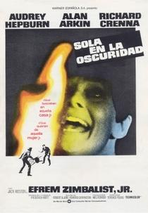 Um Clarão nas Trevas - Poster / Capa / Cartaz - Oficial 9
