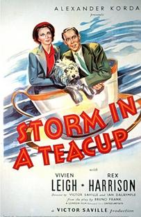 Tempestade em Copo D'água - Poster / Capa / Cartaz - Oficial 1