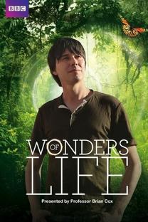 As Maravilhas da Vida (BBC) - Poster / Capa / Cartaz - Oficial 2