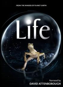 BBC - Vida - Poster / Capa / Cartaz - Oficial 1