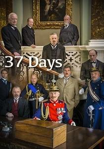 37 Days - Poster / Capa / Cartaz - Oficial 1