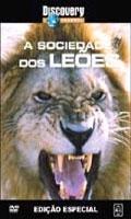 Discovery Channel - A Sociedade dos Leões - Poster / Capa / Cartaz - Oficial 1