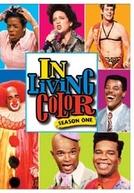 In Living Color (1ª Temporada)