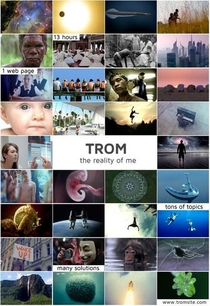 TROM (The Reality of Me) - Poster / Capa / Cartaz - Oficial 1